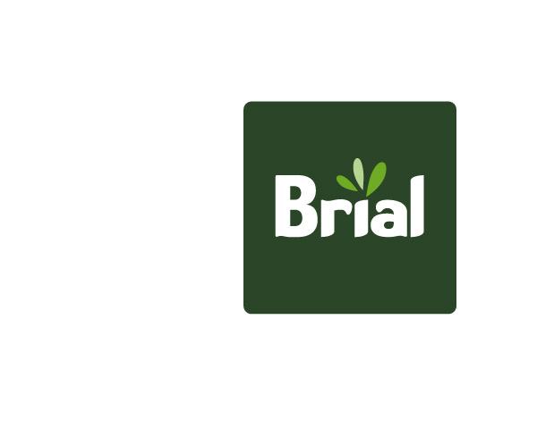 Brial: energía, inmobiliaria y construcción: diseño de marca